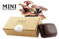 Мыло «Manzhitang» mini